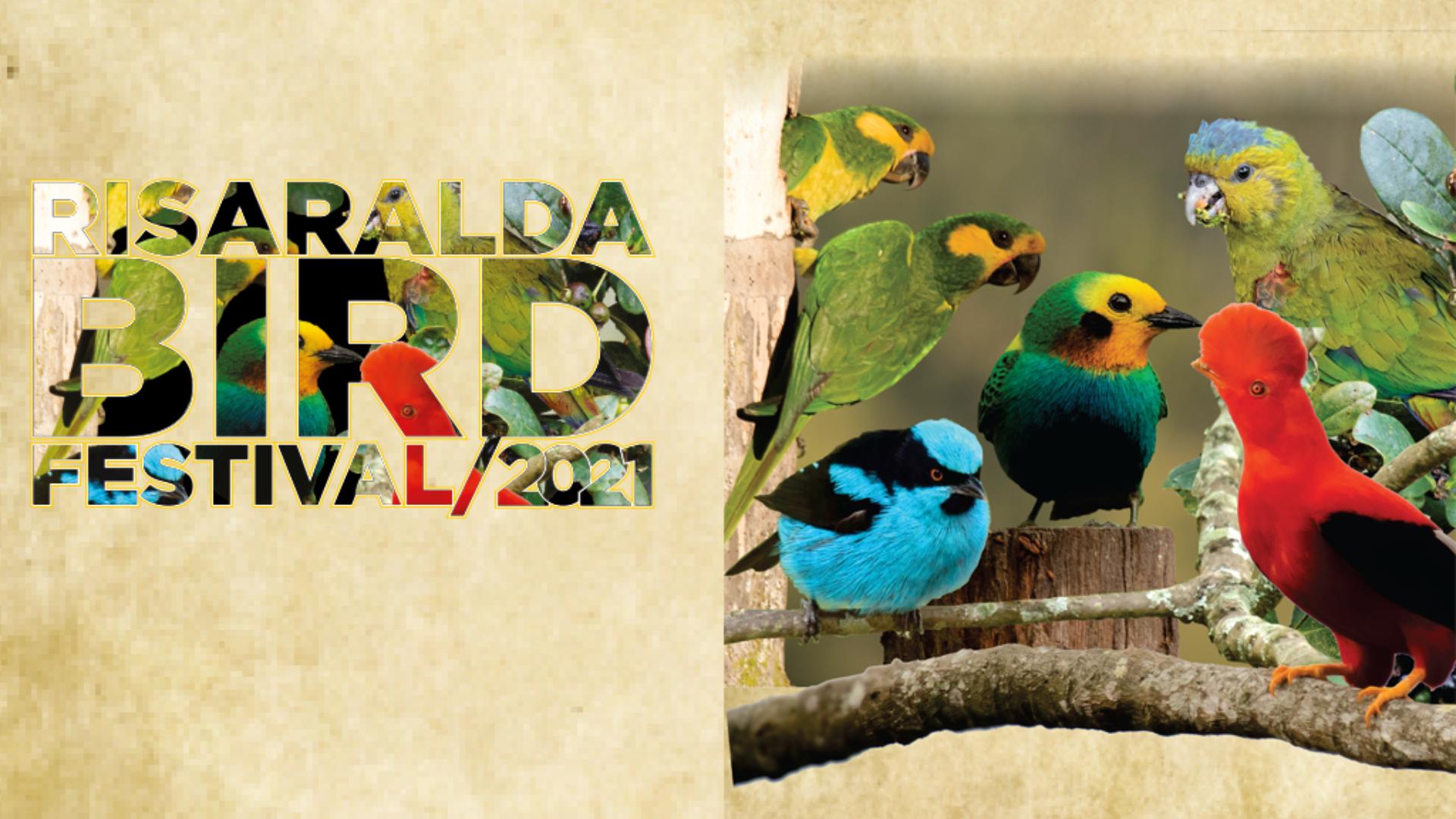Risaralda Bird Festival